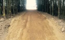 Calandrino driveway 1